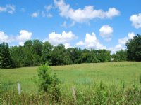 31 Acres, Hardwoods, Pond, Pasture