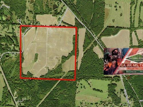 160 Ac Farm Land For Sale Price R : Coffeeville : Yalobusha County : Mississippi
