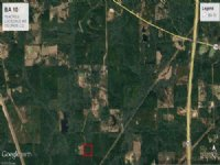 10.76 Acres Hunting Land, Timber