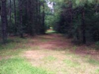 38.60 Acres Residential Land