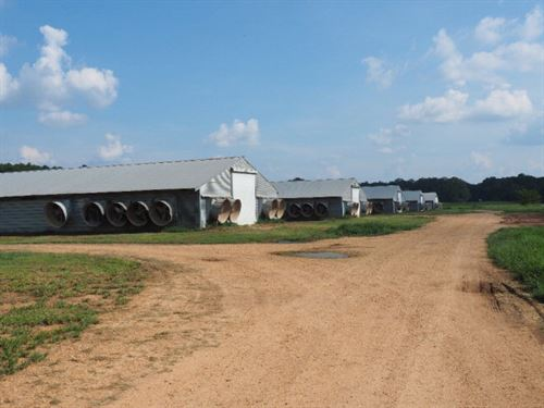 Poultry Farm With Home Summit Ms : Summit : Pike County : Mississippi