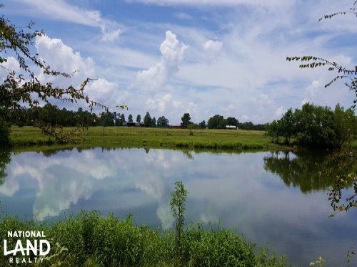 87 Acre Cattle-Horse Ranch/Estate : Lovelady : Trinity County : Texas