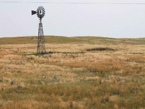 Bass Pasture : Glendo : Platte County : Wyoming