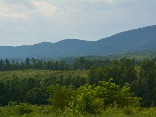 Everything You Want : Wingina : Nelson County : Virginia