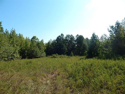Reduced, Hunting Tract : Milledgeville : Baldwin County : Georgia