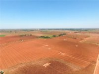 Land Auction: 658+/- Acs, 5 Tracts