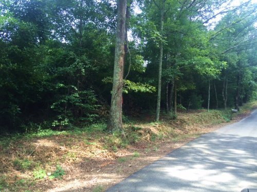 9.348 +/- Wooded Acres, Tract 3 : Cartersville : Bartow County : Georgia