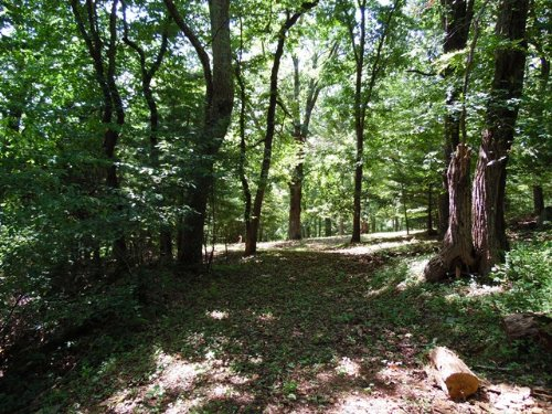Lot #105 Pt. Lookout Mountain Tract : Independence : Grayson County : Virginia