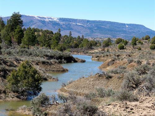 Palmer Ranch : Dulce : Rio Arriba County : New Mexico