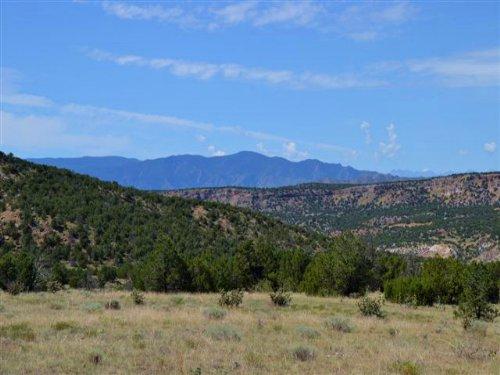 Felch Creek Ranch : Canon City : Fremont County : Colorado