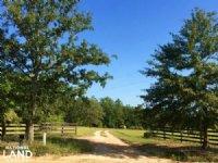 Farmland With Brick Home