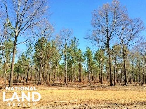 Camden Estate Horse & Hunting Land : Camden : Kershaw County : South Carolina