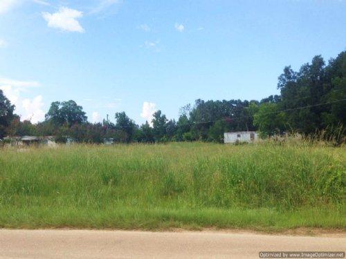 27.5± Acres : Brandon : Rankin County : Mississippi