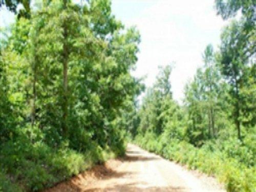 9.34 Acre Green Mountain Ranch : Winona : Shannon County : Missouri