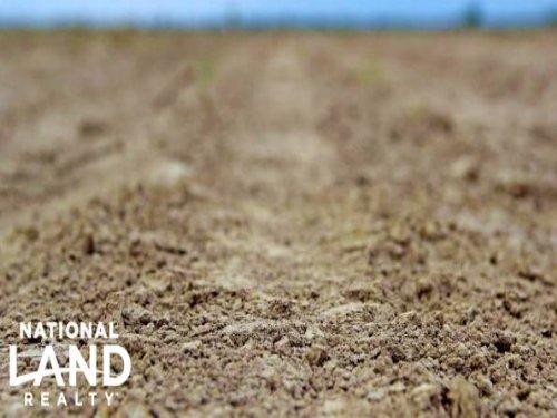 Farm Land For Sale : Syracuse : Hamilton County : Kansas