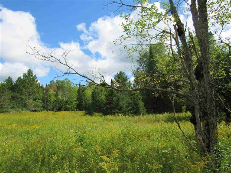 Alston Cemetery Rd Mls# 1097410 : Alston : Houghton County : Michigan
