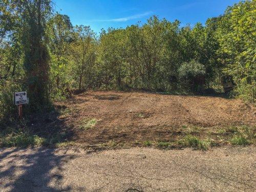 Plantsville Rd - 69 Acres : Chesterhill : Morgan County : Ohio