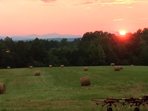Pollards View Farm : Scottsville : Albemarle County : Virginia