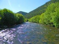 West Fork River Ranch