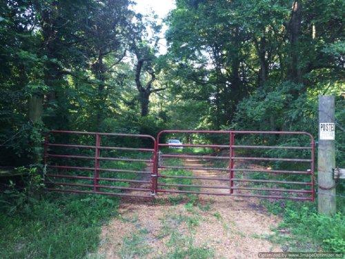 147+/- Recreational Tract : Yazoo City : Yazoo County : Mississippi