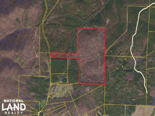 Cedartown Large Acreage Hunting Tra : Cedartown : Polk County : Georgia