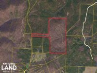 Cedartown Large Acreage Hunting Tra