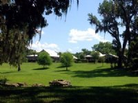 Wacahoota Ranch - 126 Acres : Gainesville : Alachua County : Florida