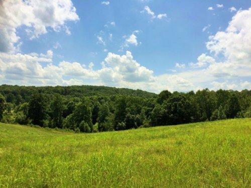 Auraria Tract : Dahlonega : Lumpkin County : Georgia