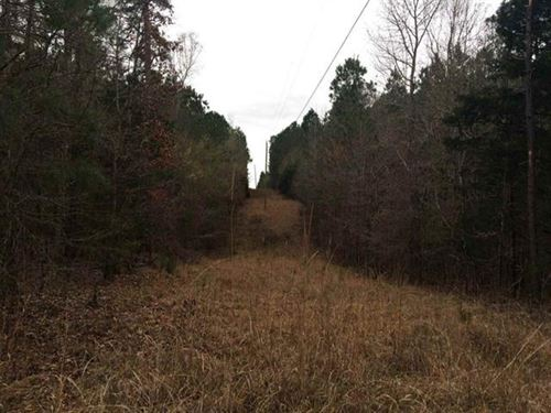 Hunting Land For Sale Water Valley : Water Valley : Yalobusha County : Mississippi