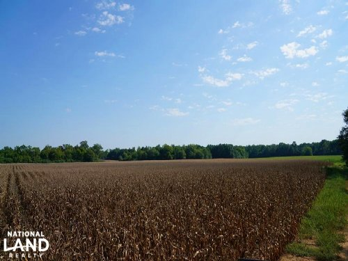 Shelby County 384 Acres : Vincent : Shelby County : Alabama