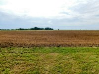 10/12/16 Auction: 2-80 Acre Tracts