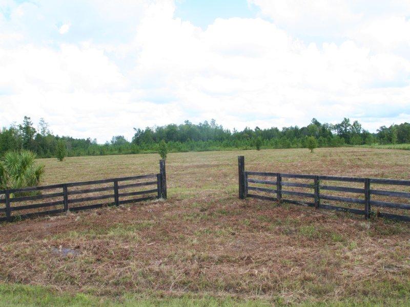 20.63 Acres - Wildlife Way : Callahan : Nassau County : Florida