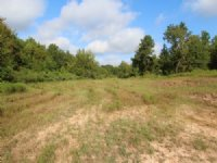 Hunting Land For Sale : Clarksville : Red River County : Texas