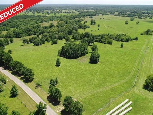 195 Acres in Montgomery, Texas : Montgomery : Texas