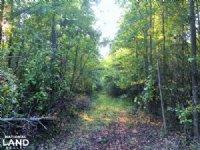 Hwy 321 Hunting Land