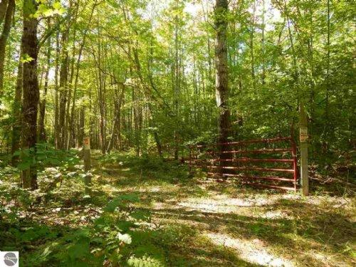 23.7 Acres Next To State Land : Mikado : Iosco County : Michigan