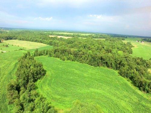 79 Acres Hwy 151 : Madison : Monroe County : Missouri
