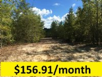 5.75 Ac With Driveway & Home Site