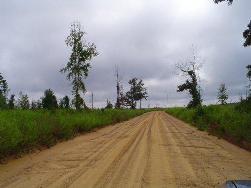 Glynn Alexander East : Sardis : Burke County : Georgia