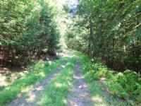 149+/- Acres Land In Benton