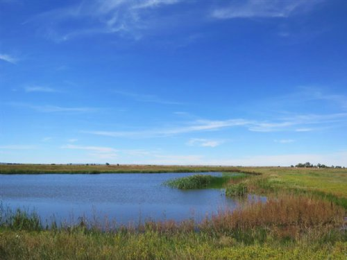 The 2D Farm : Nisland : Butte County : South Dakota