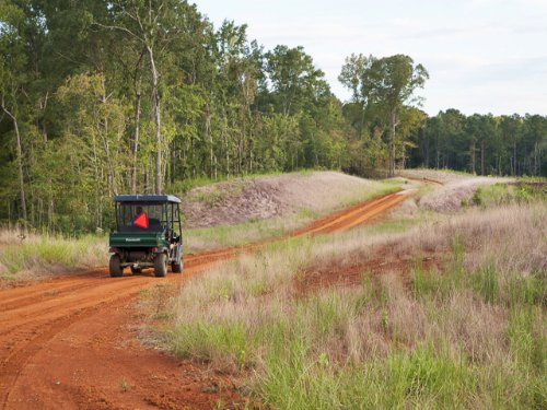 A New South Legacy Tract : Centreville : Bibb County : Alabama