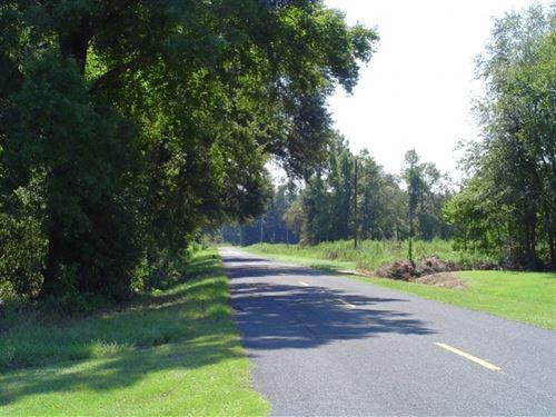 W.T. Smith South : Orangeburg : South Carolina