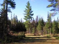 21750 Timberland, Mls# 1097521 : Michigamme : Baraga County : Michigan