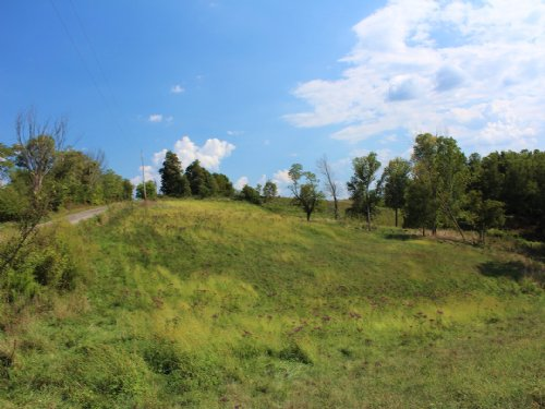 Rainbow Lake Rd - 35 Acres : Athens County : Ohio