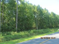 Land. Approx 48ac Lot.