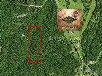 20.00 Acres Recreation Land, Timber