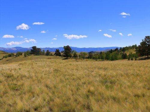Wapiti Meadows : Canon City : Fremont County : Colorado