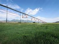 236333 71+ Acres With Water Rights : Salida : Chaffee County : Colorado