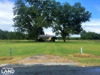 Allendale Hunting & Farming Estate
